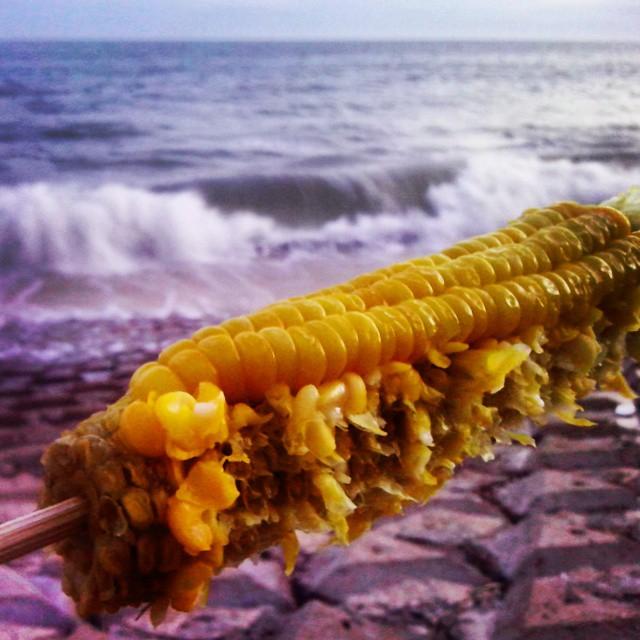 кукуруза во Вьетнаме