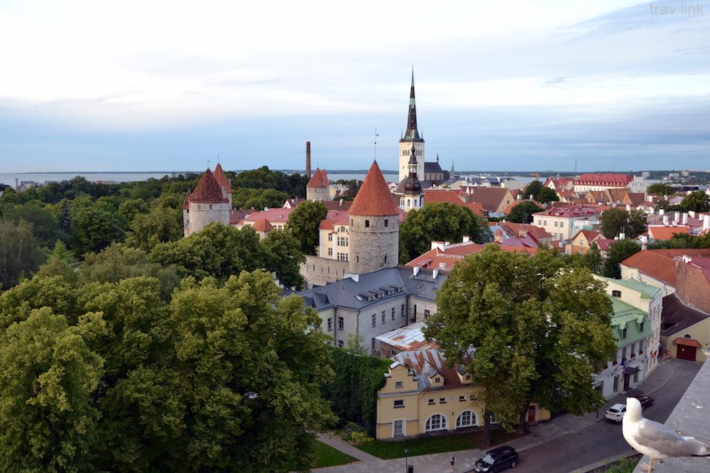 Таллин фото Старого города и центра