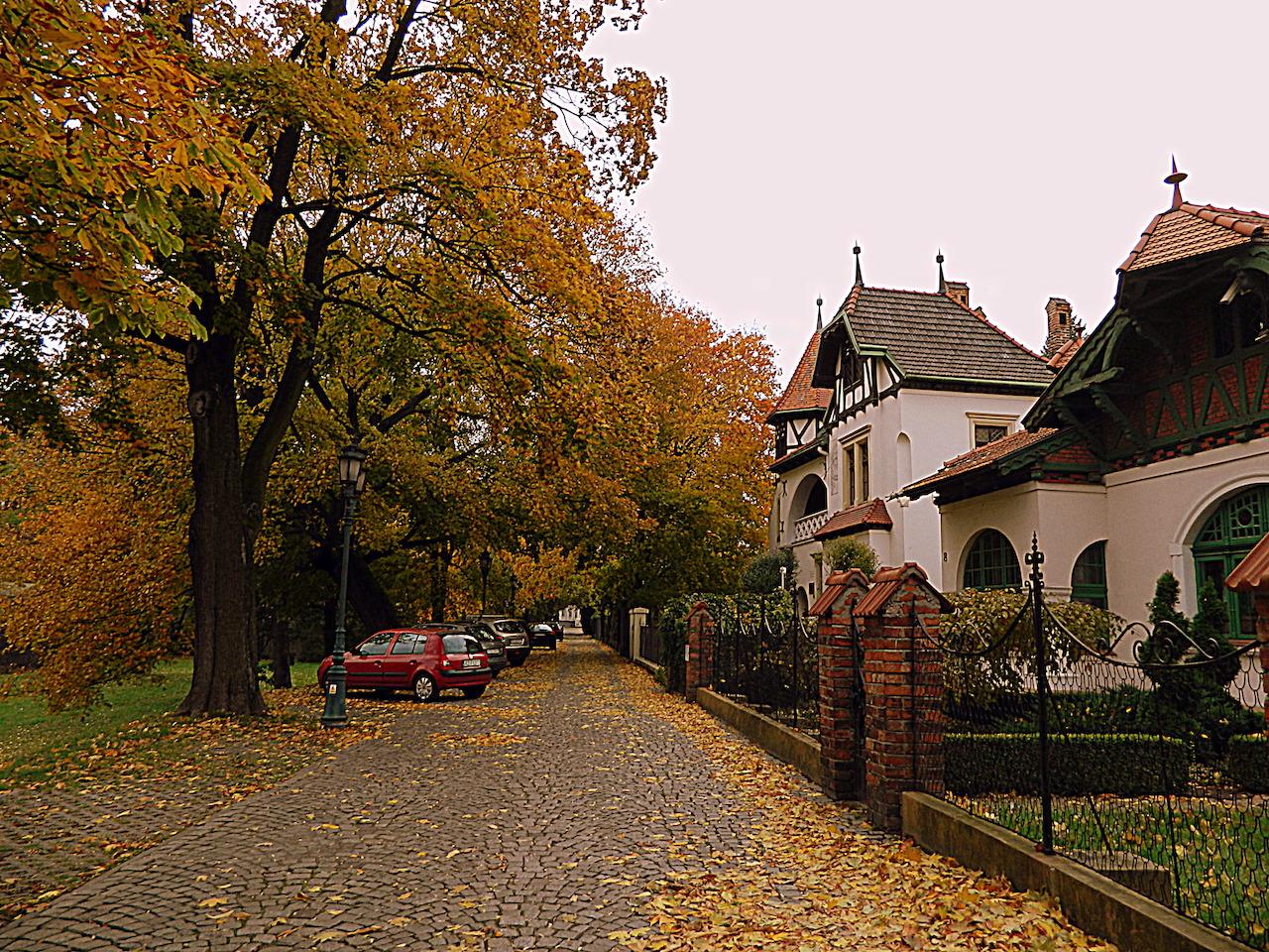 Жешув Польша фото